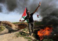 هزيمة اسرائيل و انتصار فلسطين